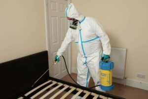 Санобработка помещения от клопов и тараканов