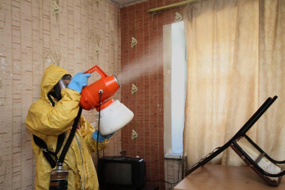 Эффективное уничтожение тараканов в Москве