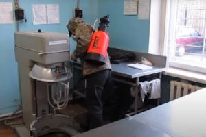 Комплексные меры по уничтожению грызунов в Москве дешево