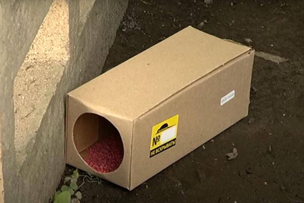 Обработка помещений от крыс и мышей в Москве