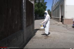 Эффективное уничтожение крыс в Москве