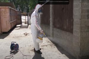 Профессиональное уничтожение грызунов тараканов в Москве недорого
