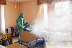 Борьба домашней молью в Москве