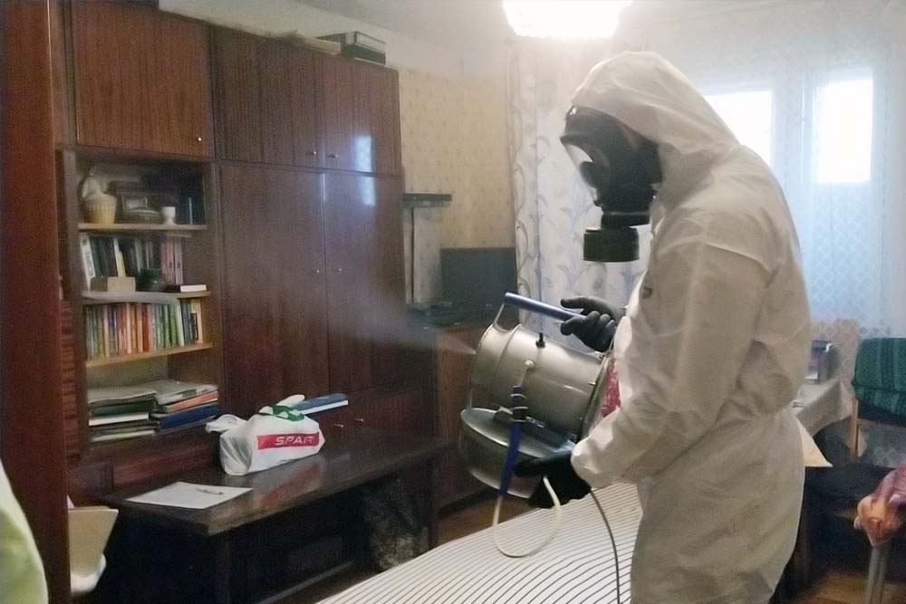 уничтожение мух в доме