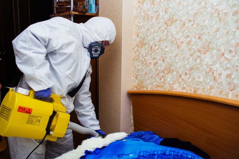 дезинсекция мух в Москве