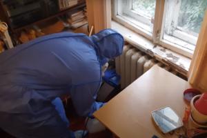 Борьба с муравьями в квартире в Москве