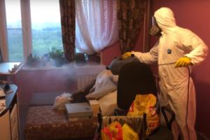 Уничтожение насекомых клопов тараканов муравьев в Москве