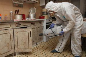 Борьба с муравьями в квартире в Москве недорого