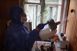 Уничтожение рыжих муравьев в Москве