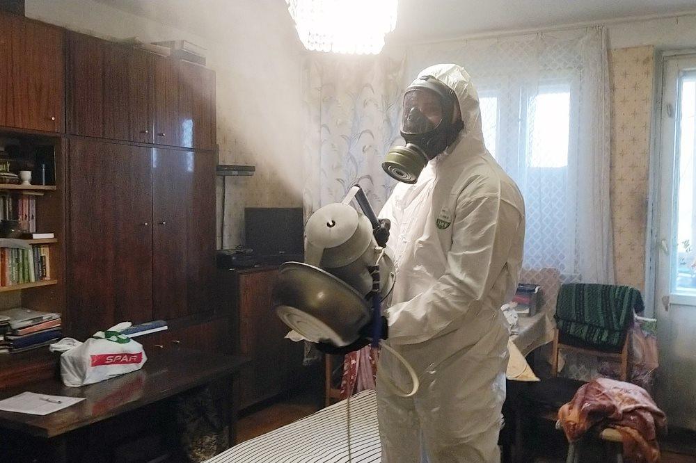 Эффективное уничтожение мух в Москве