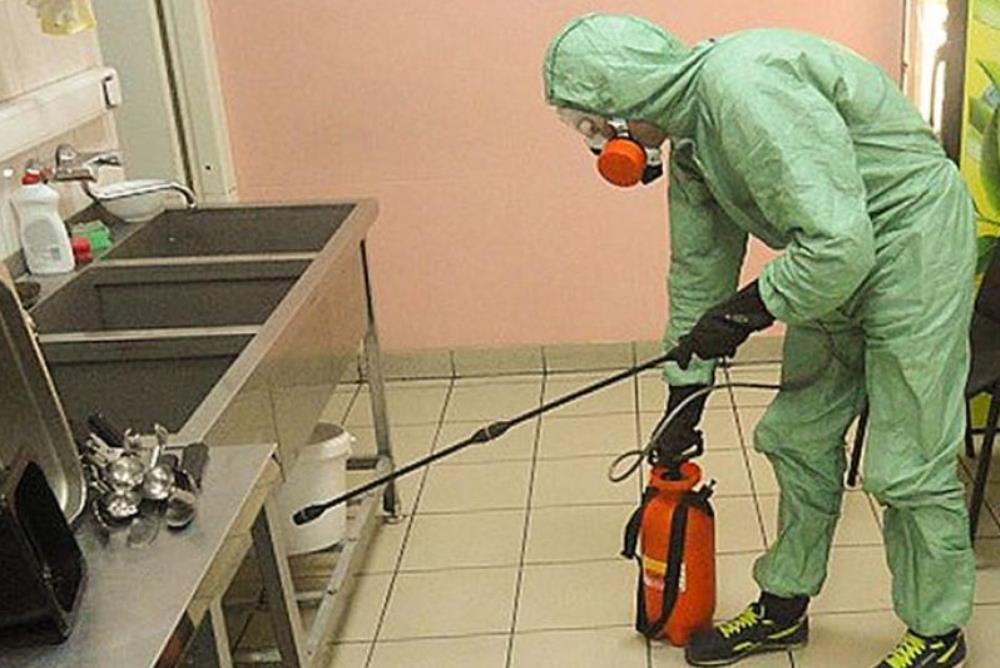 Уничтожение насекомых в квартире в Москве