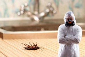 Дезинфекция помещений от тараканов в Москве