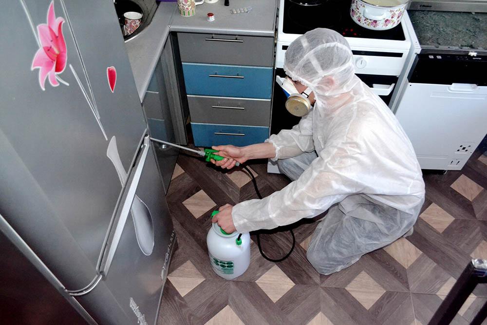 дезинфекция квартиры в Москве